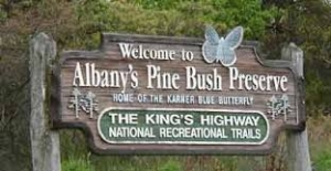 Lynne Jackson talks about the 40th Anniversary of Save the Pine Bush